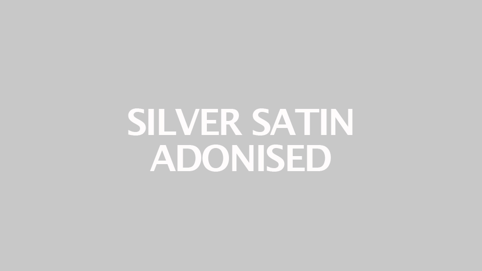 Silver Satin Adonised